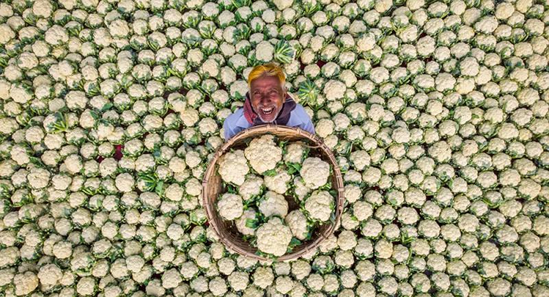 2021 Basın Fotoğrafçılığı Yarışması'nı 'Mutlu çiftçi' adlı eser kazandı