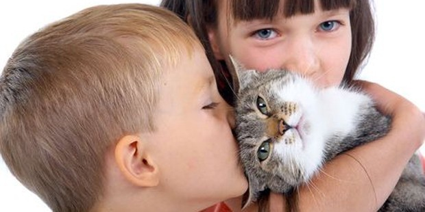 Araştırma: Kedilerinizin size daha çok sevgi göstermesini nasıl sağlarsınız?