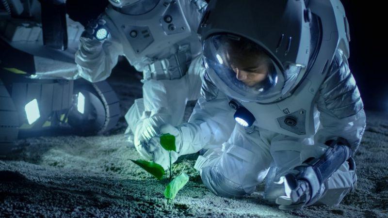 bilim insanı, güneş, gezegen, hycean,Bilim insanları, güneş sistemi dışında insan yaşamına uygun gezegenler keşfetti