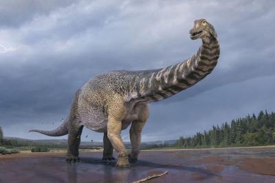 100'den fazla dinozor yumurtası ve dinozor kalıntıları bulundu