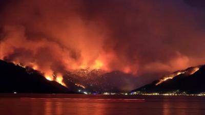 '81.398 adet futbol sahası büyüklüğünde bir alan yandı'
