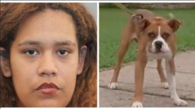 ABD'de komşusunun köpeğini hedef alırken kendi oğlunu vurdu