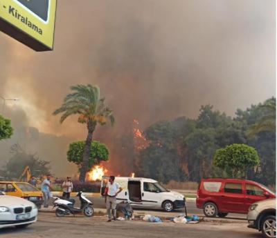 Antalya'da orman yangını: 'Yaralılar var, hayvanlar öldü'