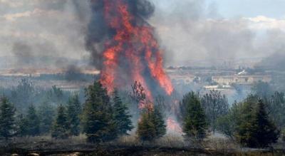 AOÇ'deki yangının şüphelisi için istenen ceza belli oldu