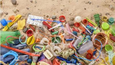 Araştırma: Plastik yiyen bakteri ve mantarlar atık sorununa çözüm olabilir