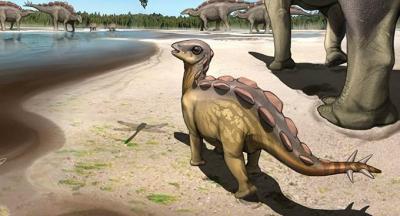 Çin'de bebek dinozora ait 5.7 santimetrelik bir ayak izi bulundu