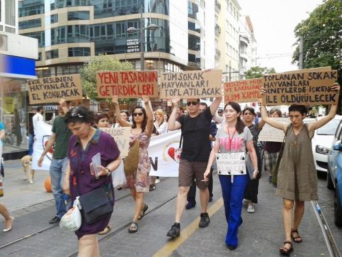 Hayvan özgürlüğü aktivistlerinden yeni yasa tasarısına protesto!