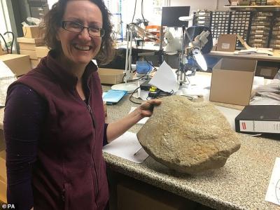 İngiltere'de penis motifli 2000 yıllık değirmen taşı bulundu