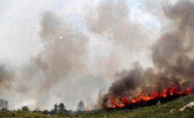 Isparta ve Denizli'de orman yangını çıktı