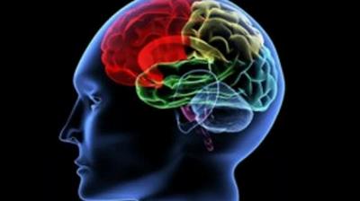 'Koronavirüs beyni küçültüyor'