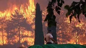 Manavgat, Alanya, Akseki ve Gündoğmuş'taki yangınlara müdahale ediliyor