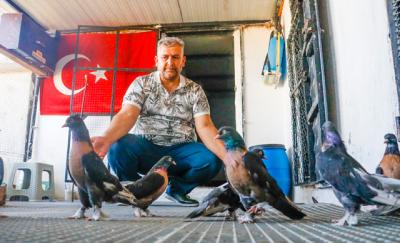Mardin'de güvercinler için 40 bin TL'ye oda yaptırdı