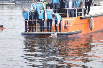 Müsilajla mücadele: Oksijen seviyesini artıracak cihazlar denize bırakıldı