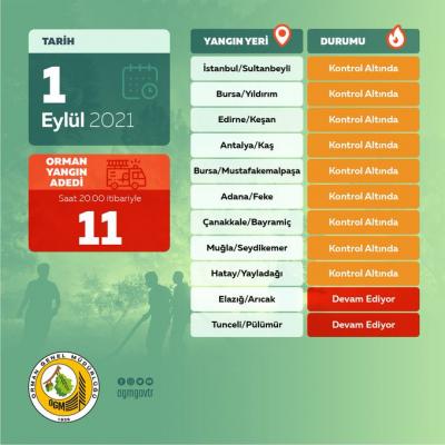 Orman Genel Müdürlüğü: Bugün çıkan 11 yangının 9'unu kontrol altına aldık