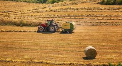 Rusya'dan Türkiye'ye tarım ürünleri ihracatı yüzde 17 arttı