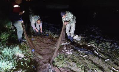 Van'da 3 ton 300 kilo inci kefali avına 69 bin lira ceza