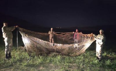 Van'da kaçak avlanan 16 ton 200 kilo inci kefali suya bırakıldı